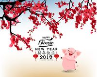 Año Nuevo chino feliz 2019, año del cerdo Año Nuevo lunar Feliz Año Nuevo del medio de los caracteres chinos ilustración del vector