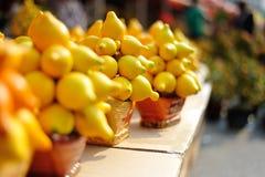 Año Nuevo chino--Fruta de la fortuna Fotografía de archivo libre de regalías