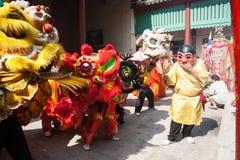 Año Nuevo chino, la danza de león Fotografía de archivo libre de regalías