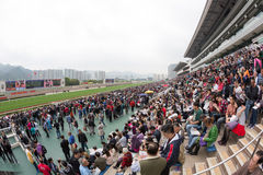 Año Nuevo chino Raceday en Hong Kong Fotos de archivo