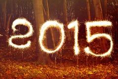 Año Nuevo 2015, chispeando Imágenes de archivo libres de regalías