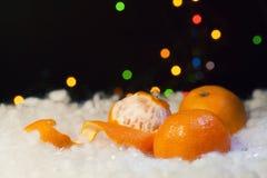 Año Nuevo con los mandarines Imagen de archivo libre de regalías