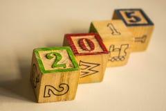 Año Nuevo de la madera Fotos de archivo