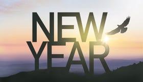 Año Nuevo de la silueta con salida del sol Foto de archivo libre de regalías