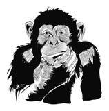 Año Nuevo de la tarjeta del cartel del diseño del dibujo del vector del mono Fotos de archivo libres de regalías