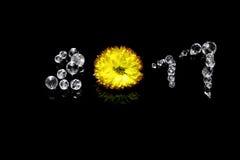 Año Nuevo 2017 de las gotas cristalinas y de la flor amarilla brillante, él reflexiones del ` s, fondo aislado, negro Símbolo de  Imagenes de archivo