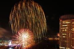 Año Nuevo de los fuegos artificiales de la opinión del río Foto de archivo