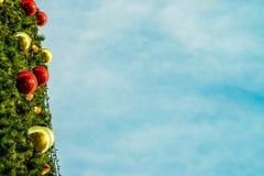Año Nuevo del árbol de abeto Imagenes de archivo