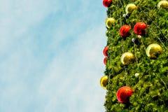 Año Nuevo del árbol de abeto Imagen de archivo libre de regalías