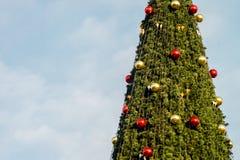 Año Nuevo del árbol de abeto Fotografía de archivo