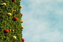 Año Nuevo del árbol de abeto Foto de archivo libre de regalías