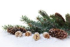 Año Nuevo 2015 del corcho del Año Nuevo Fotografía de archivo libre de regalías