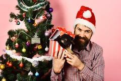 Año Nuevo del perro El individuo con la cara alegre desempaqueta presente imagen de archivo libre de regalías