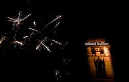 Año Nuevo del símbolo Foto de archivo