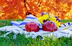 Año Nuevo judío Manzanas de Rosh Hashana, día de fiesta de las granadas de la miel Imágenes de archivo libres de regalías
