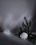 Año Nuevo, la Navidad ramas y conos del abeto en una tabla en el crepúsculo Fotos de archivo