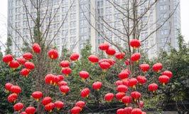Año Nuevo lunar chino Imagen de archivo libre de regalías