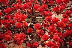 Año Nuevo lunar chino Pekín de las linternas rojas afortunadas Imagen de archivo libre de regalías