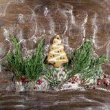Año Nuevo sabroso Foto de archivo libre de regalías