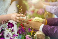 Año Nuevo tailandés - gente joven que vierte el agua y las flores en las manos del mayor en la ceremonia de Songkran Foto de archivo libre de regalías