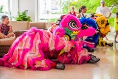 Año Nuevo vietnamita que viene del dragón asiático lunar del Año Nuevo Fotos de archivo