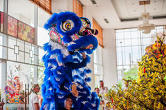Año Nuevo vietnamita que viene del dragón asiático lunar del Año Nuevo Fotografía de archivo