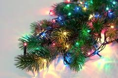 Año Nuevo y árbol de navidad Imagenes de archivo