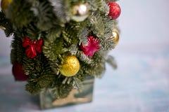 Año Nuevo y árbol de navidad de Nobilis Fotografía de archivo libre de regalías