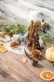 Año Nuevo y decoración del invierno de la Navidad con las ramas del abeto Foto de archivo libre de regalías