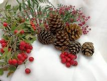 Año Nuevo y tarjeta de Navidad Foto de archivo libre de regalías