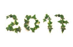 Año verde feliz 2017 Foto de archivo libre de regalías