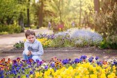7 años de muchacho miran las flores coloridas Foto de archivo libre de regalías