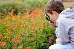 7 años de muchacho miran las flores coloridas Fotografía de archivo