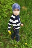 2 años lindos de niño con los dientes de león que camina en hierba Imagenes de archivo