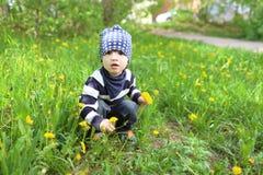 2 años lindos de niño que se sienta en hierba con los dientes de león Imagen de archivo libre de regalías