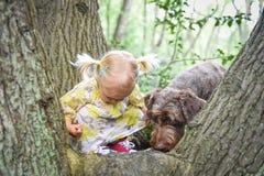 2 años lindos de vieja muchacha que juega con su perro Imágenes de archivo libres de regalías