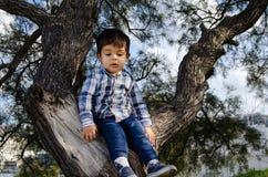 2 años lindos del muchacho vestido en la camisa que se sienta en el árbol, sucio alrededor de la boca foto de archivo libre de regalías
