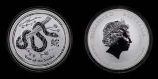 años lunar de 1 dólar 2 de la plata de la serpiente 1oz 999 Foto de archivo libre de regalías