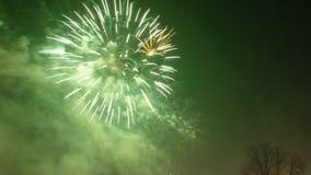 Años Nuevos de fuegos artificiales Imagen de archivo