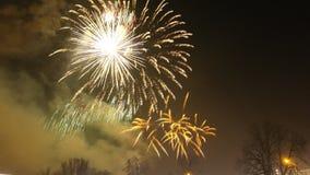 Años Nuevos de fuegos artificiales Fotografía de archivo libre de regalías