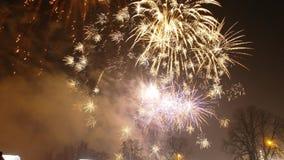 Años Nuevos de fuegos artificiales Fotos de archivo