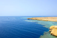 Aúlle con agua azul en Ras Muhammad National Park en Egipto Fotografía de archivo libre de regalías