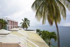 Aúlle en la costa del Fort-de-France de la ciudad, Martinica Fotos de archivo
