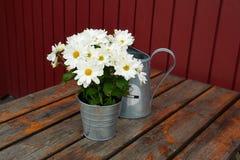 Aún cesta hermosa de la vida de flores Fotografía de archivo libre de regalías