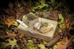 Aún composición otoñal de la vida con manteca de cerdo y pan Fotografía de archivo