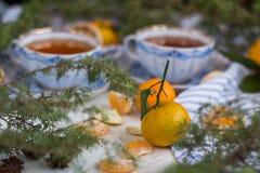 Aún una vida hermosa con las tazas de té y de mandarinas Fiesta del té de la Navidad Foto de archivo libre de regalías