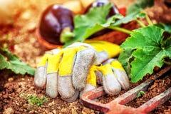 Aún vida agrícola al aire libre Imagen de archivo libre de regalías