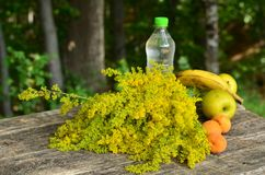 Aún vida al aire libre con las flores y las frutas Fotografía de archivo