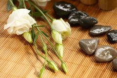Aún-vida, aroma de la flor Foto de archivo