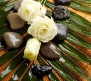 Aún-vida, aroma de la flor Imagenes de archivo
